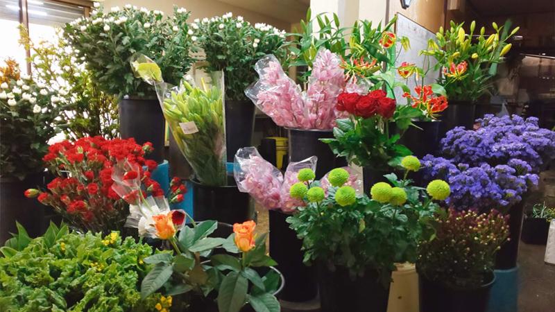 ミズギク生花